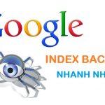 Cách index backlink nhanh nhất