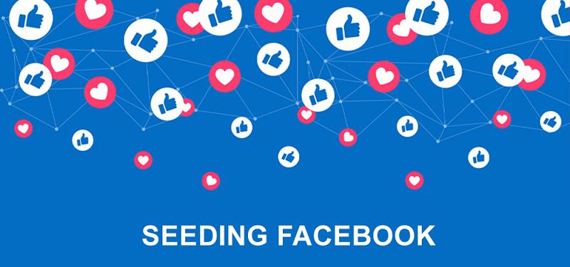 Fb seeding